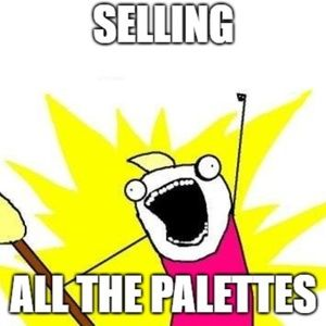 Ridiculous number of palettes for one woman to own